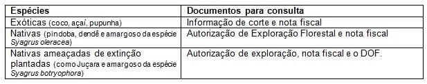 Idaf alerta sobre exigências para corte e comercialização do palmito 3